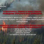 пожар лес видео